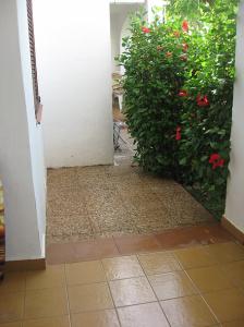 terraza dos hab